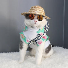 Load image into Gallery viewer, Cat Eye-Wear Pet Sunglasses