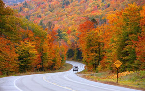 4 Weekend Roadtrips to Soak Up the Fall Foliage