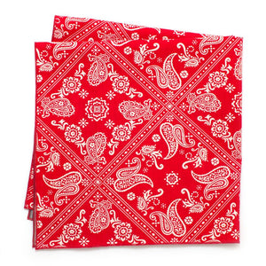 1940s Flame Paisley/ Chambray Double-Sided Bandana - General Knot & Co. ,  Archives - Neckwear and travel bags