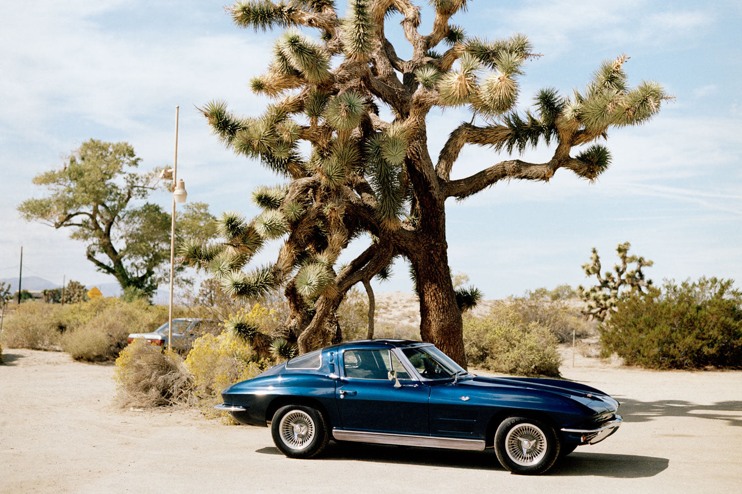 Blue Corvette, Palmdale, California