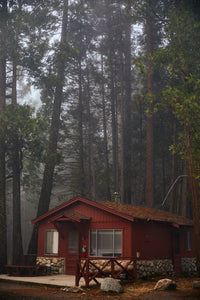 Red Cabin, Redwoods, Yosemite NP