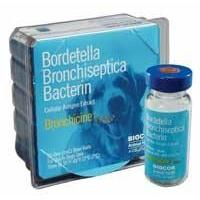 <B>Zoetis</B> Bronchicine CAe Single Vial - Bordetella