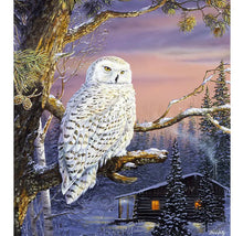 Load image into Gallery viewer, Paint By Number Kit- Snow Owl