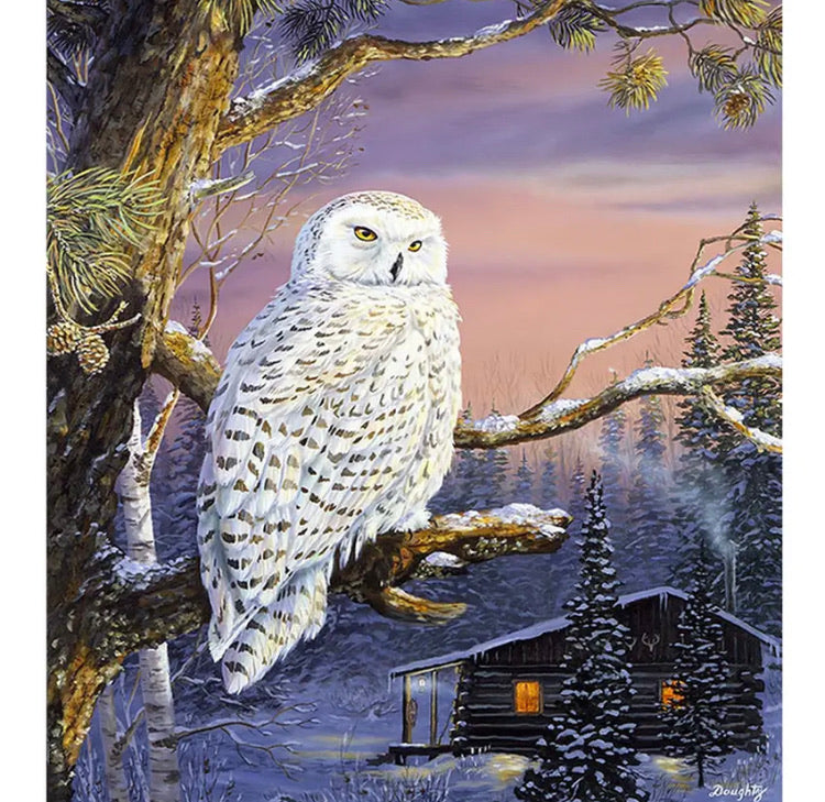 Paint By Number Kit- Snow Owl