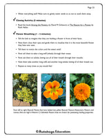 Pre-K/Kindergarten Winter Lessons; by Rutabaga Education Garden & Science Curriculum