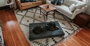 K9 Ballistics Best Sellers - our best selling dog beds