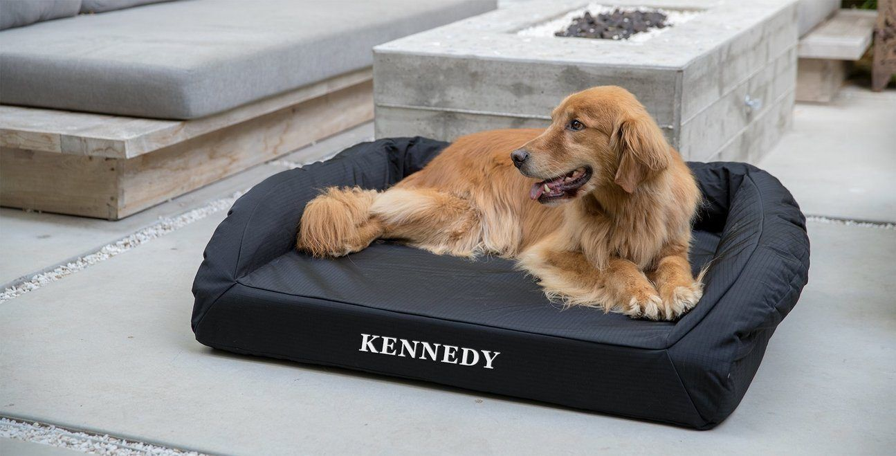 a golden retriever lying a black, bolstered, orthopedic dog bed