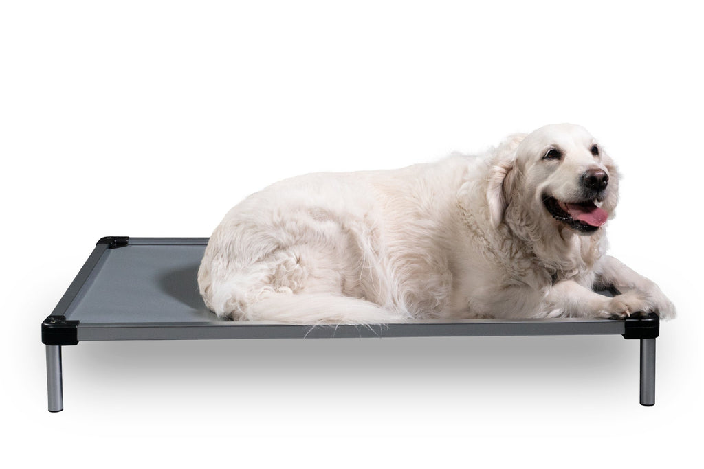 Chew Proof Armored Elevated Vinyl Dog Bed™