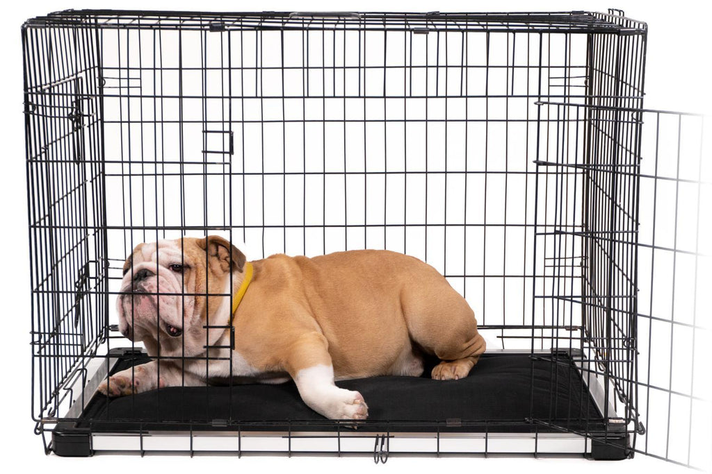 Chew Proof Armored Dog Crate Pad™