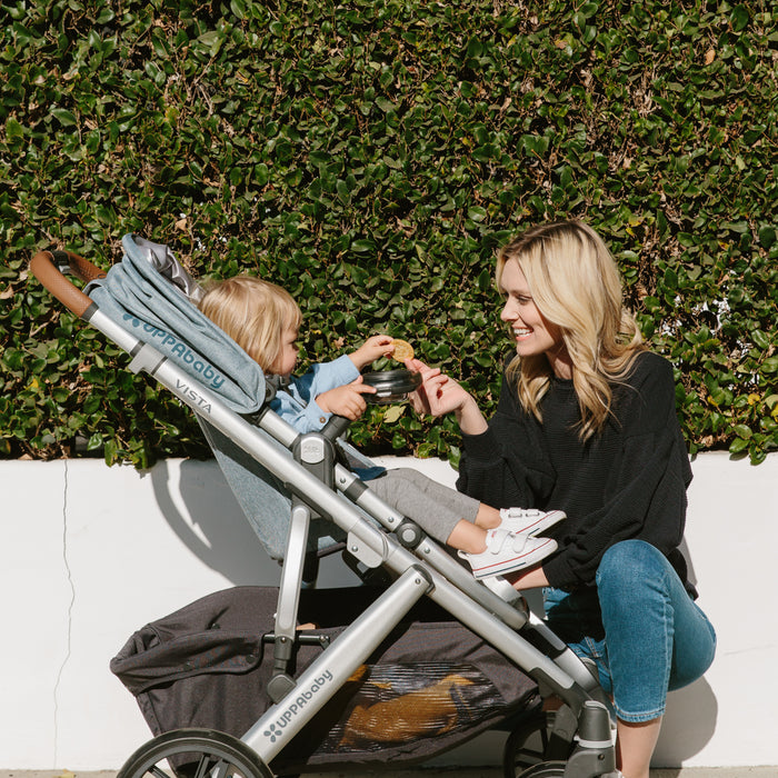 UPPAbaby Vista 2019 vs Bugaboo Donkey2 | Stroller Comparison ( Ratings | Review )