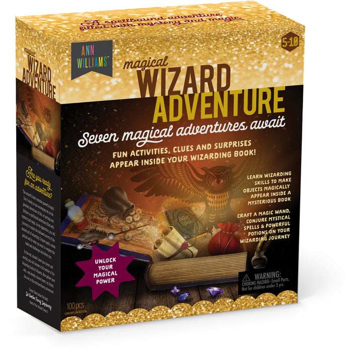 Ann Williams Magical Wizard Adventure
