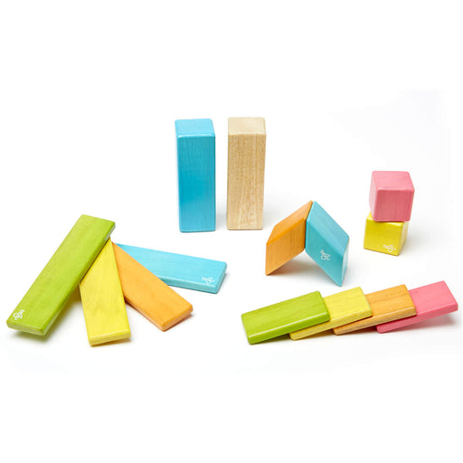 Tegu Magnetic Blocks - 14-Piece Set Tints