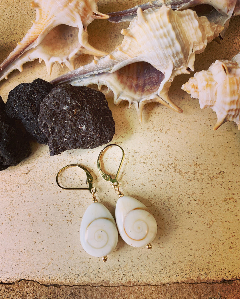Shiva Eye Sea Shell Earrings - Water Element Creations