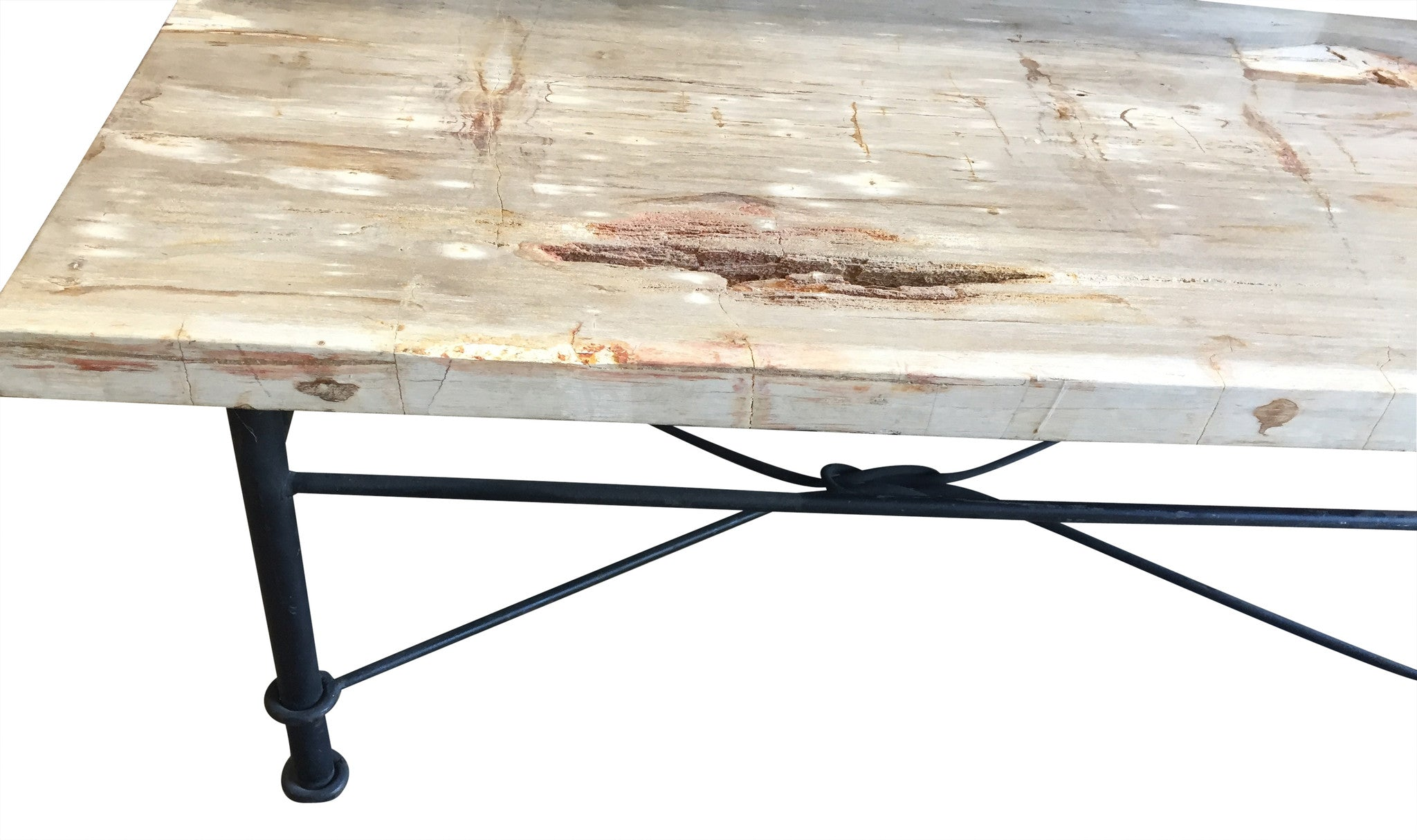 Petrified Wood Coffee Table with Iron Base Haskell Antiques