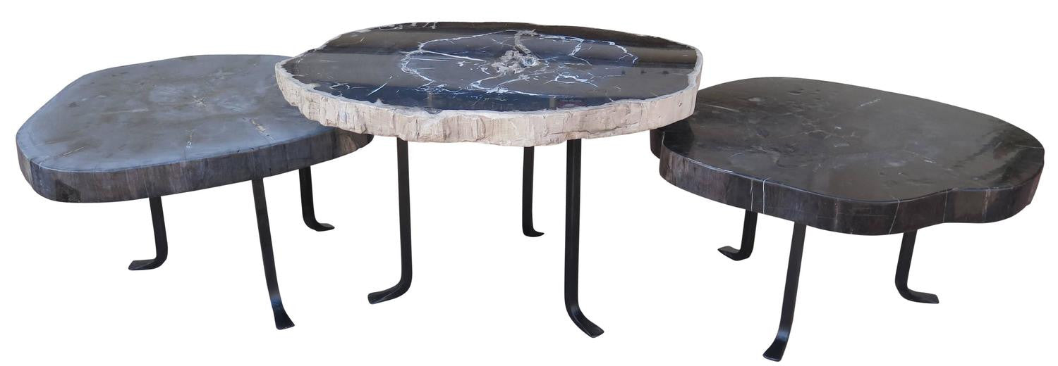 Group Of Petrified Wood Nesting Coffee Tables Haskell Antiques