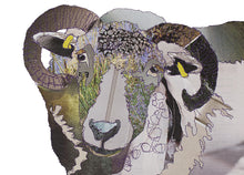 'Baaaa' - Greetings Card