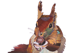'Big Squirrel'- Greetings Card / Print - CK0110