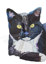 'Black-Blue Cat' - Greetings Card