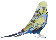 CK0129 - 'Budgie' - Greetings Card