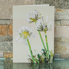 'Agapanthus' - Greetings Card / Print - CKHF05B