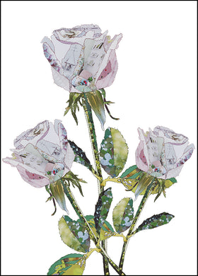 'Rose White' - Greetings Card - CKHF09B
