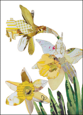 'Daffodils' - Greetings Card -CKHF12B