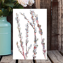 'Pussy Willow' - Greetings Card / Print - CKHF16