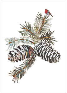 'Pine Cones' - Greetings Card - CKHFX22