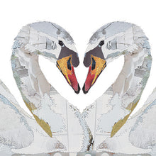 'Love Birds Swans' - Greetings Card