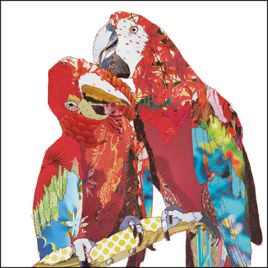'Love Birds Parrots' - Greetings Card