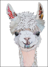 'Baby Llama' - Greetings Card / Print - CKMB12