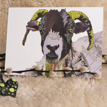 'Swaledale Sheep' - Greetings Card - CK0114