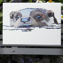'Otter Bright Water' - Greetings Card
