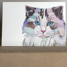 'Grey Fluff Cat' - Greetings Card