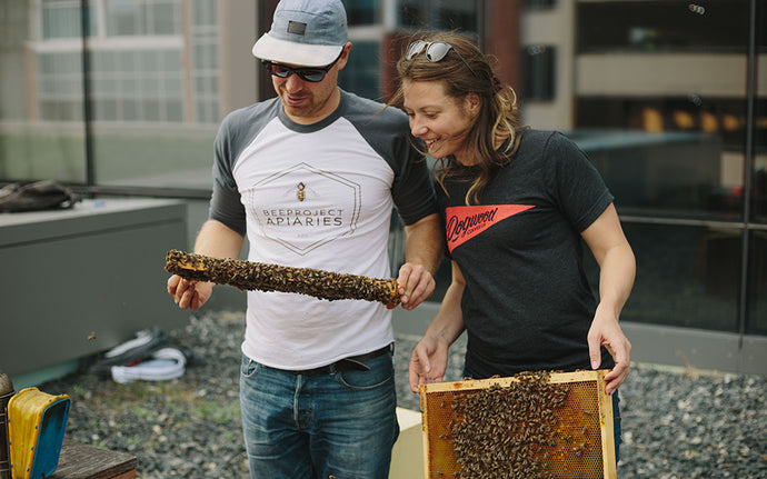 Beeproject Apiaries