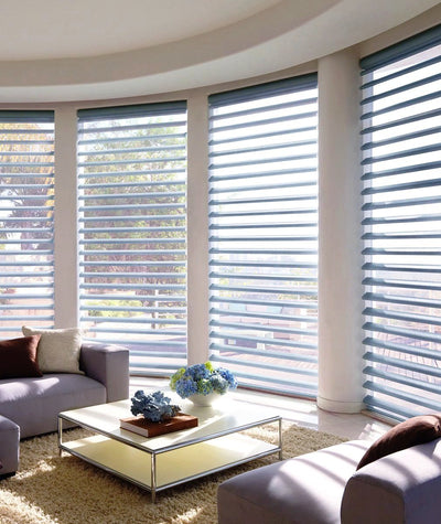 Hunter Douglas Window Treatments Pirouette Living Room