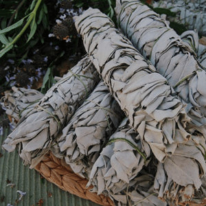 "Smudge Stick, 9"" White Sage"