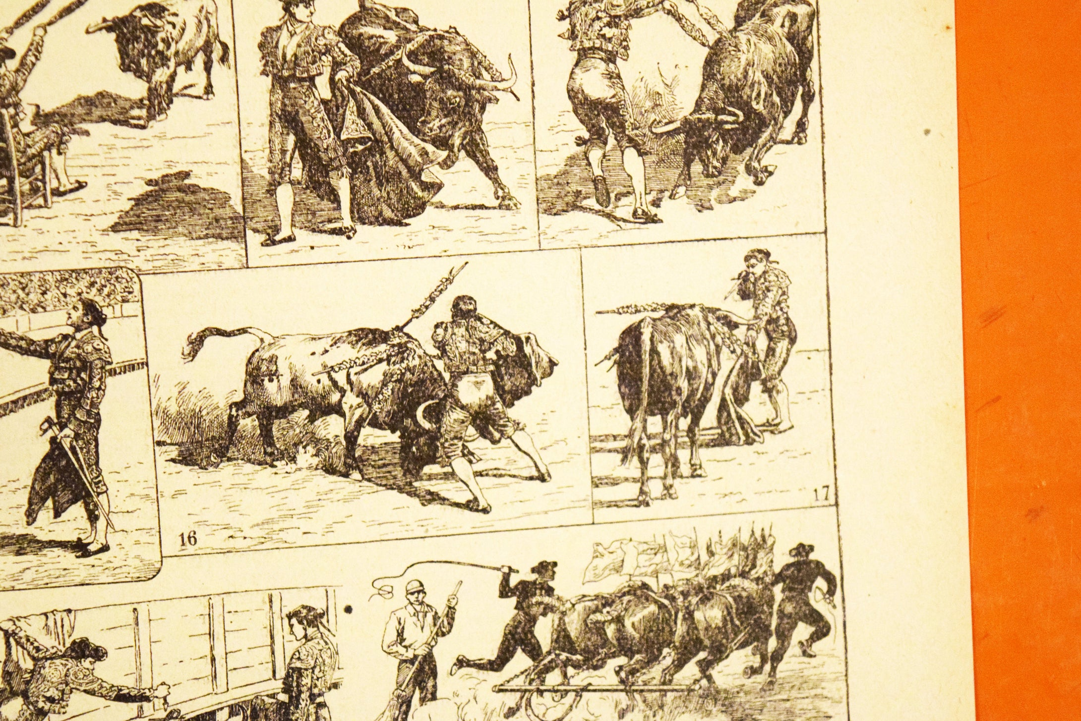 Antique Bullfighting Lithograph - 11