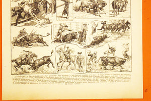 "Antique Bullfighting Lithograph - 11""x7.25"" - 1920s Larousse - French Litho Print - Printed in Paris, France - 100% Original - Taureux"