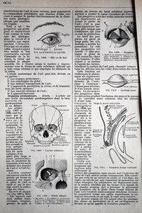 "The Human Eyes Prints - 10.25""x6.75"" - Set of 10 Antique French Lithographs - 1920s Larousse - Printed in Paris, France - 100% Original"