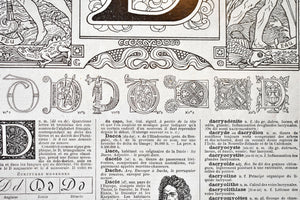 "Antique Letter D Lithograph - 11""x7.25"" - 1920s Larousse - Printed in Paris, France - Universal Print - Letters of the Alphabet"