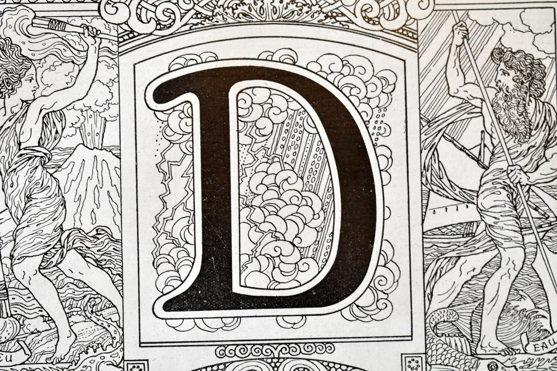 Antique Letter D Lithograph - 11