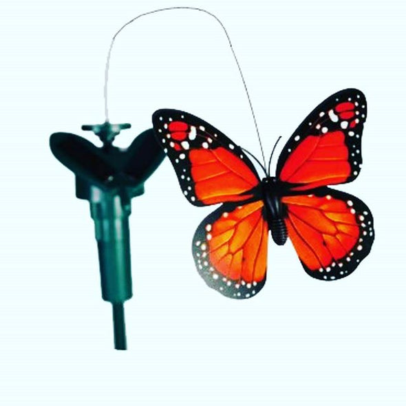 Solar Flying Butterfly
