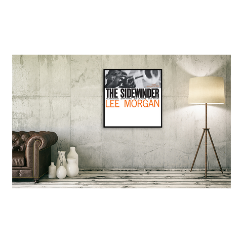The Sidewinder Framed Canvas Art