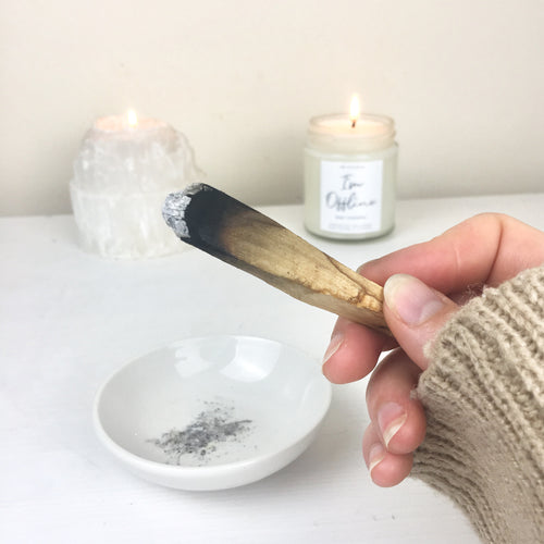 Palo Santo - Sustainable Holy Wood Sticks