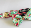 Minty Watercolour Collar + Bow