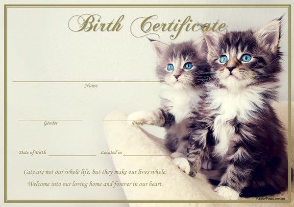 Birth Certificate - Blue Eyes