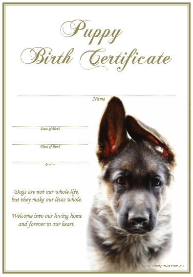 Birth Certificate - Puppy German Shepherd