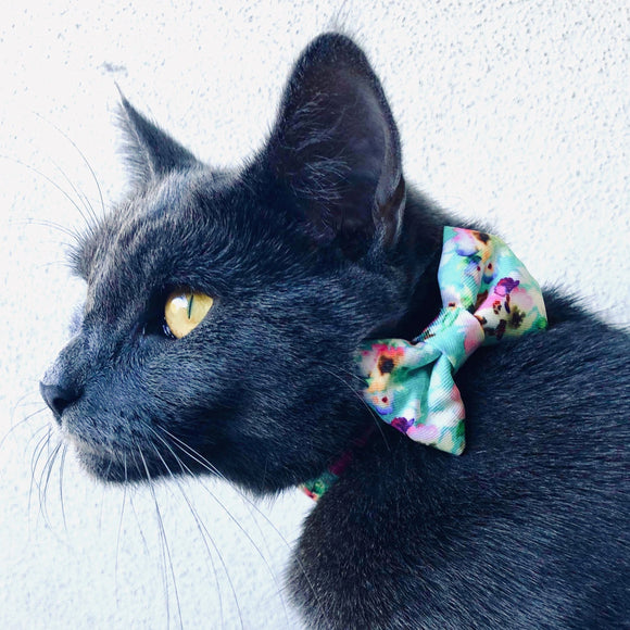 Minty Bouquet - Cat Collar & Bow