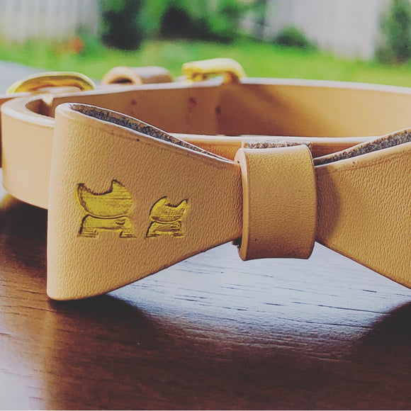 Beach Luxury Leather Collar & Bow